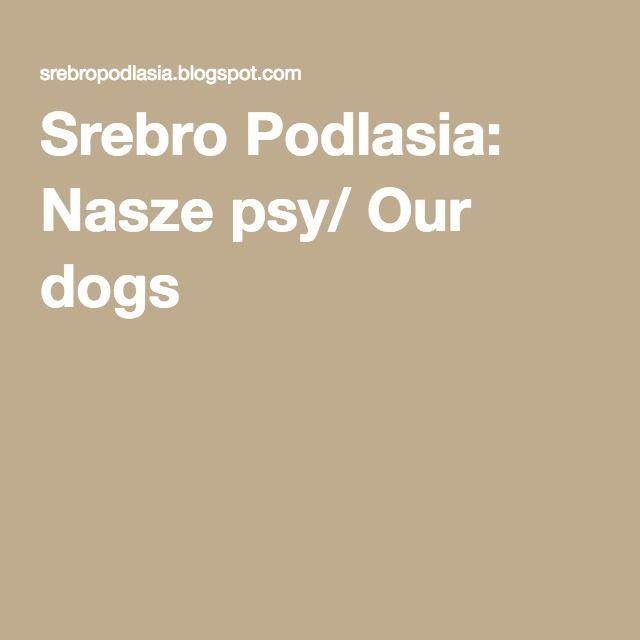 Srebro Podlasia: Nasze psy/ Our dogs