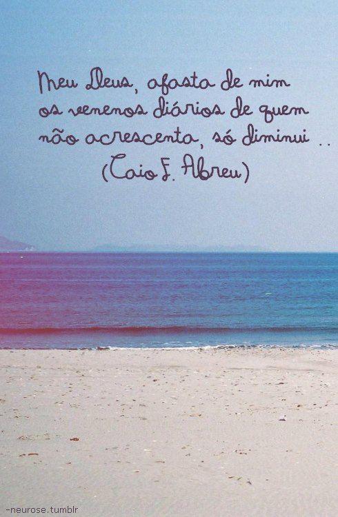 Pinterest : Rafaela Abreu ♡ ♚