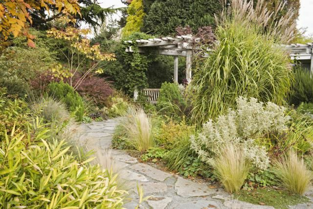 Cutting Back Ornamental Grasses: Try This Easy, No-Mess Technique: Leaving Ornamental Grasses Up for Winter Interest