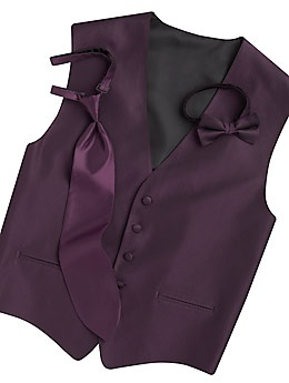 guys wore grey vests with plum colored ties:) they looked sharp! renting the dress shirt, vest and tie was 37.00 a piece from mens warehouse.