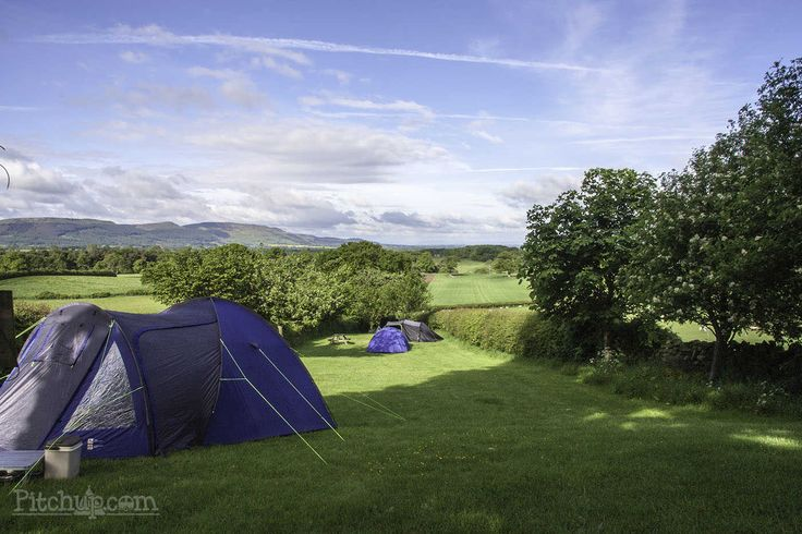 With a 9.0 review rating and views like these, it's no suprise Park Farm Campsite in North Yorkshire is a fan favourite amongst Pitchup campers. Pitchup.com