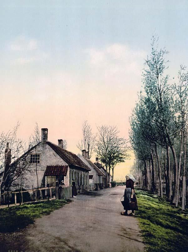 Village near Dordrecht, Dordrecht, Holland. This color photochrome print was taken between 1890 and 1900.