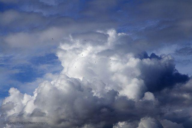 Kapiti clouds | © Elyse Childs Photography