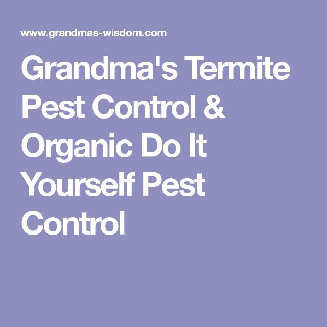 Best 25 termite pest control ideas on pinterest essential oils grandmas termite pest control organic do it yourself pest control solutioingenieria Choice Image