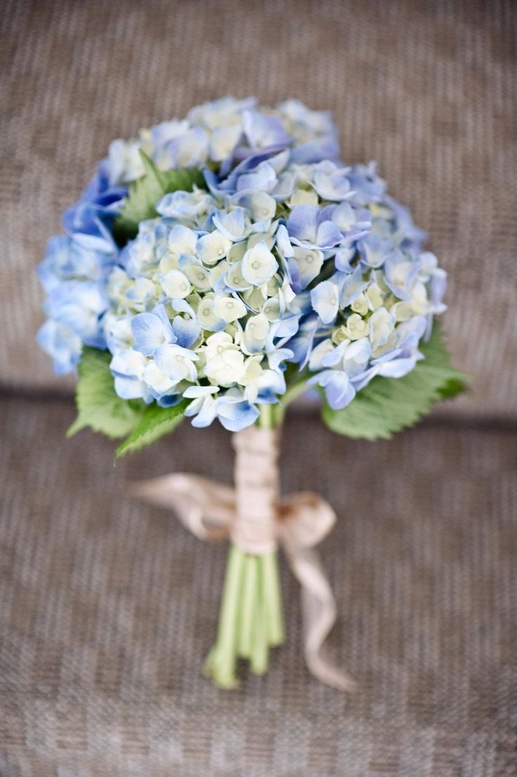 Simple blue hydrangea wedding flower bouquet, bridal bouquet, wedding flowers, add pic source on comment and we will update it. www.myfloweraffair.com can create this beautiful wedding flower look.
