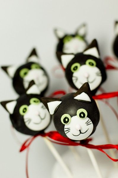 jess the cat cake pops 1 web By Juliets tallwood cakes and biscuits.co.uk