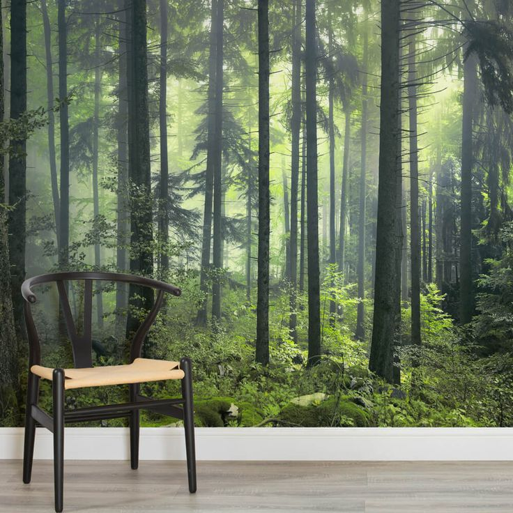 mysterious-spring-forest-square-wall-murals