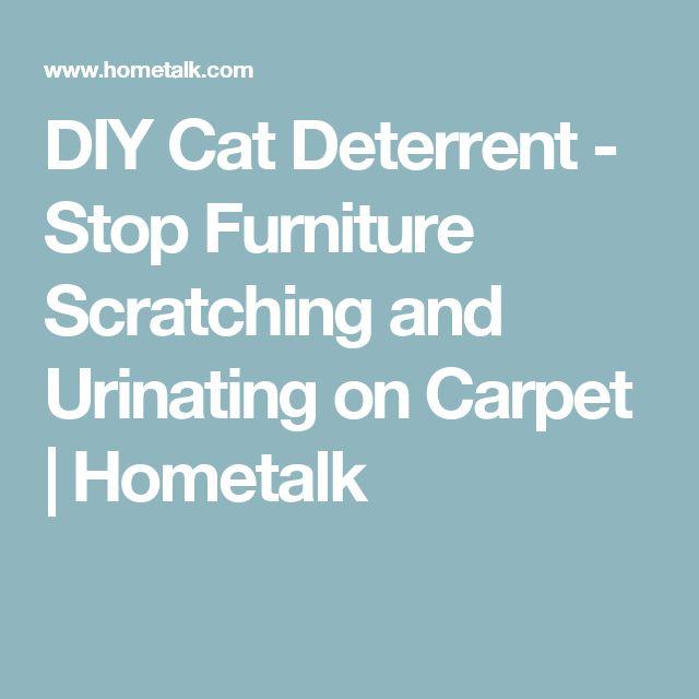 25 B Sta Furniture Scratches Id Erna P Pinterest Tips F R Vardagslivet