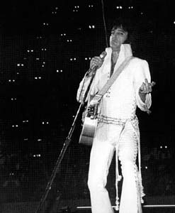 On Stage 70s - To Elvis and his band and singers, the audience appears as a bunch of frogs - cameras, binoculars, etc.reflecting the stage lights in the dark of the auditorium. He liked to ask that the house lights be turned up so he could actually see the crowd.