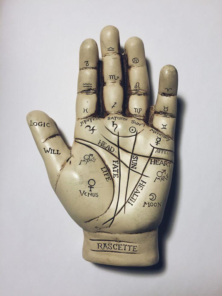 Palmistry 101