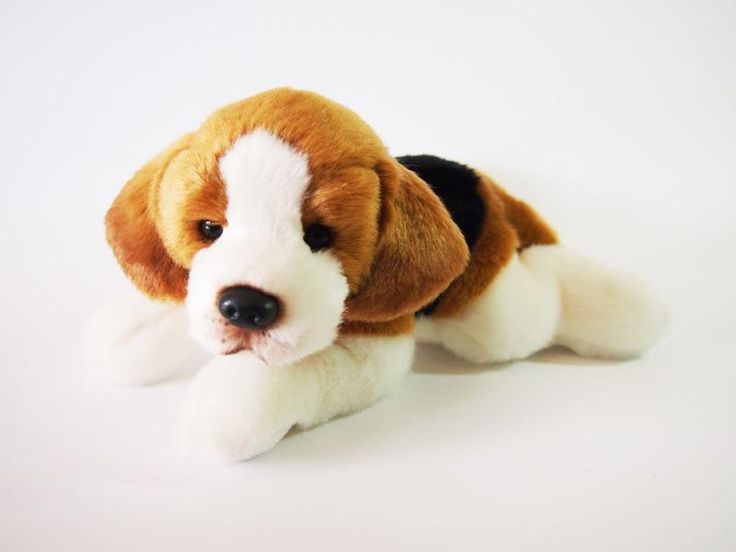 CUDDLY CRITTERS SOFT PLUSH BEAGLE DOG BENNY I COOL CAT COLLECTABLES