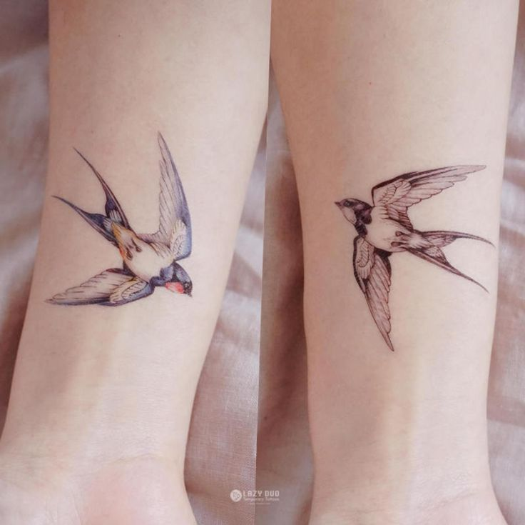 Waar Henna Tattoo Kopen: Color Temporary Tattoo Swallow Tattoo Bird Tattoo Peace