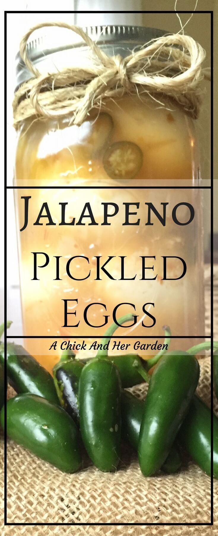 If you like pickled eggs and you like spicy, this is the perfect treat! Eat as a snack, appetizer or add on top of salads!