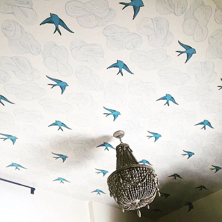 Daydream (French Blue) on the ceiling (via @phdwallpapering)