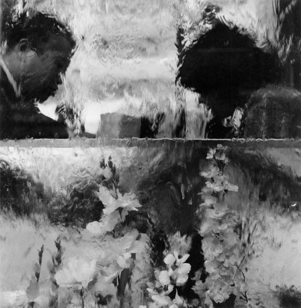 "from ""Monogusa Syui"" (1981) by Issei Suda"