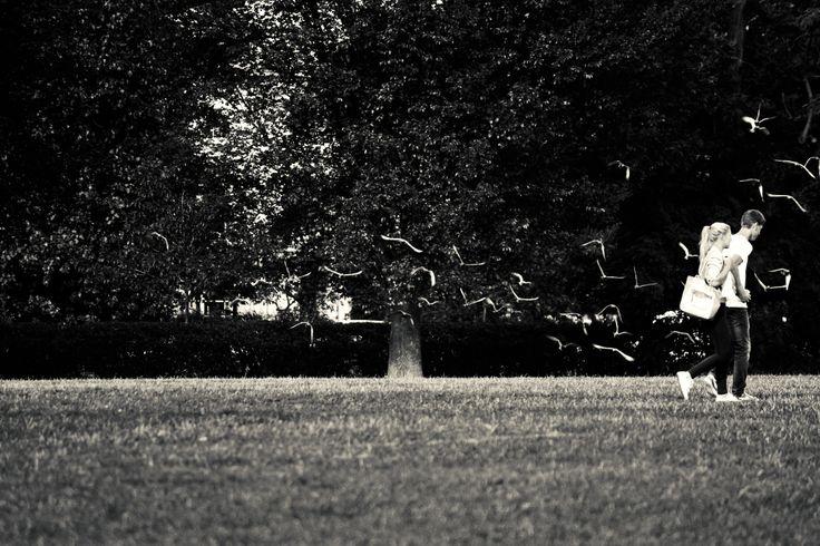 Lazy Sunday | Flickr - Photo Sharing!