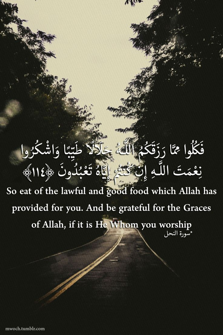 So eat of the lawful and good food which allah has provided for you. And be grateful for the graces of allah, if it is he whom you worship.