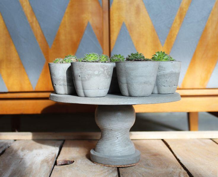 #concrete #concretedesign #concretelove #succulent #succulentlove #greenery #design #decor