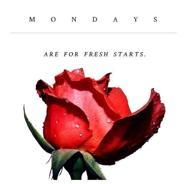 Let's have a fresh start! Wishing you a magical week ❤️ #aveseena #positivevibes #mondaymotivation #wecandoit #startnow #instagood