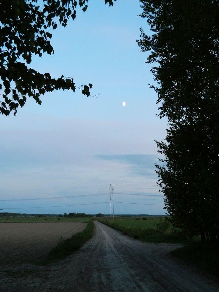 Plantation road. Ilmajoki Finland.