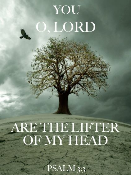 But you Lord, are a shield around me, my glory, the One who lifts my head high. Psalms 3:3. NIV