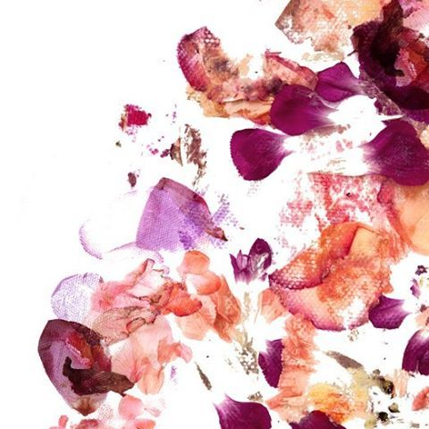 Not long until we release a new limited edition floral print on the website! In the meantime here is a sneak peak ✔️🍁💟