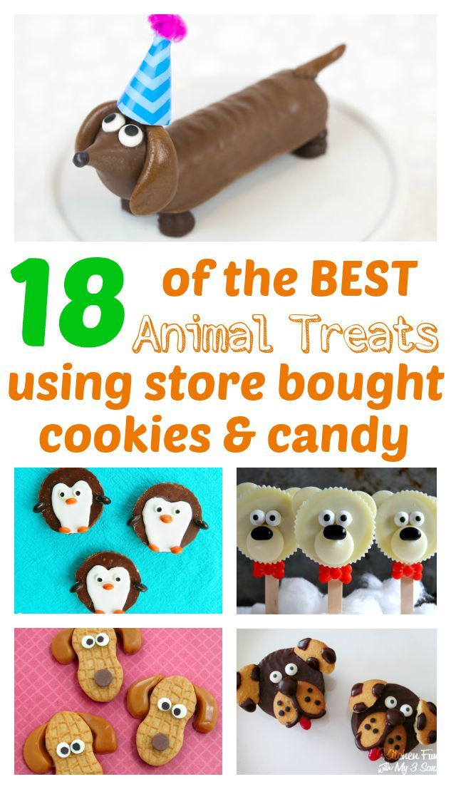 18 of the BEST Animal Themed Treats using store-bought cookies & candy!