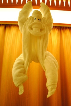 Towel origami monkey. Learn how to make towel origami at: http://FoldingMagic.com