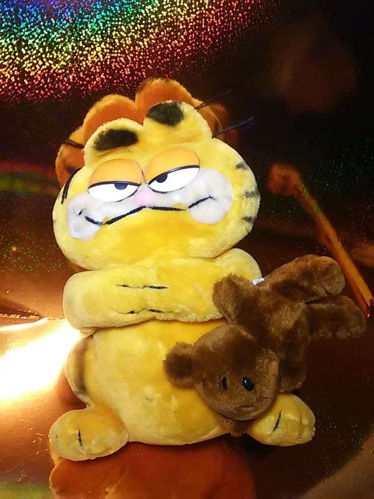 Vintage Garfield Cat DAKIN Plush Stuffed GARFIELD holding Pooky Bear #garfield #pookybear #plush