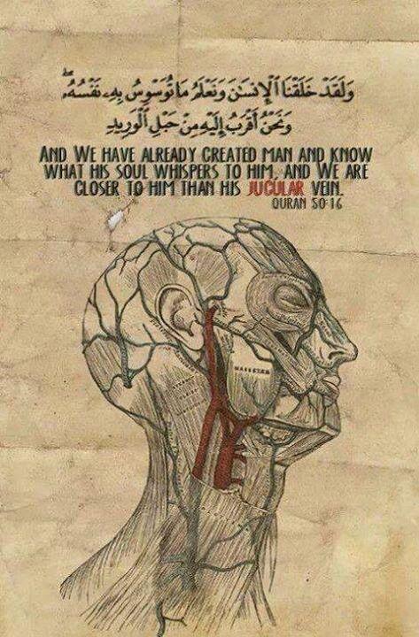 Qur'aanic verse Jugular vein #Allah #Close #BadTimes