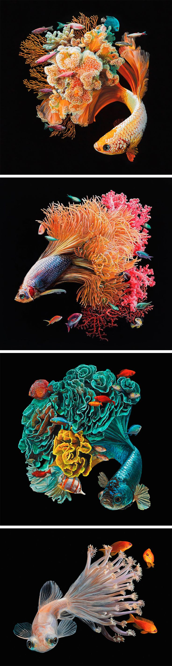 Hyperrealistic Depictions of Fish Merged With Their Coral Environments by Lisa Ericson