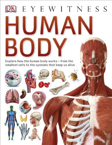 Human Body By DK Available At Book Depository With Free Delivery Worldwide