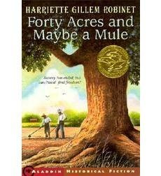Forty Acres and Maybe a Mule  - Historical Fiction Reconstruction Era - US History II
