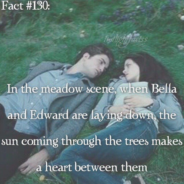 ~ I promise to post 3 times tomorrow. I was busy today, sorry. I got more video games and books, so I'm happy now. Good start to a new year - HAPPY NEW YEAR {#twilightsaga#twilight#bellaswan#edwardcullen}
