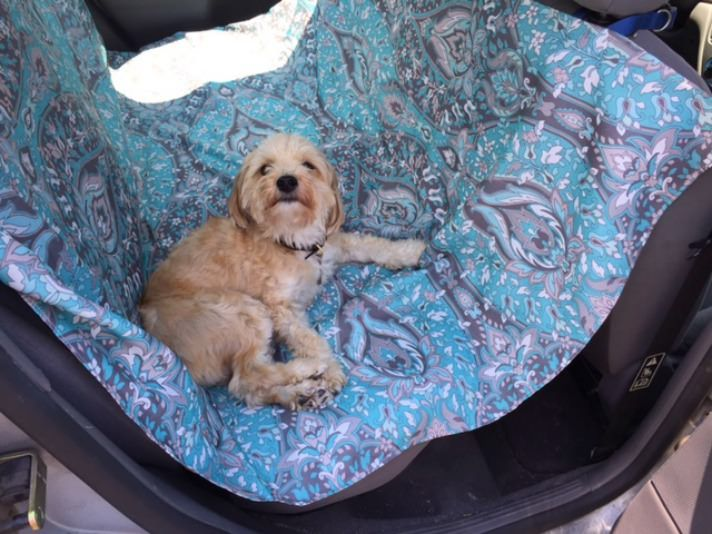DIY Car Hammock For Dogs:https://www.petcha.com/diy-car-hammock-for-dogs/