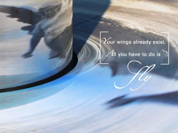 Your wings already exist. All you have to do is FLY www.lunainviaggio.com