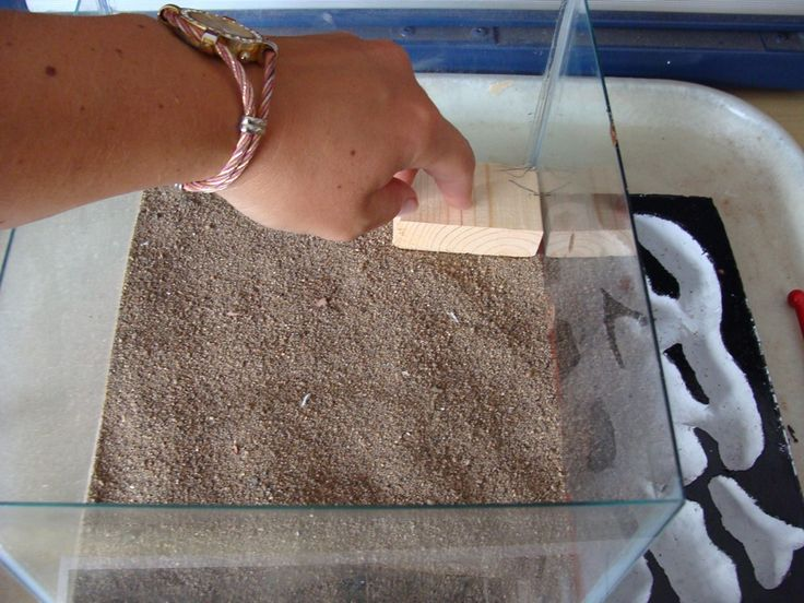 Page 1 of 3 - Photo journey of how to build a grout formicarium - posted in General Ant Keeping: I figured I would share how I built grout formicariums as I made quite a number of mistakes when I first tried it.  All I have locally available is un-sanded grout and Plaster of Paris, and I found the Plaster of Paris to get moldy very quickly.  Later I found Sanded grout, and I will post my improvements/alterations after this thread. Here is my photo journey on how I build a grout f...