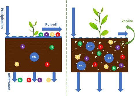 Εφαρμογή των ζεολίθων στην αειφόρο γεωργία: επισκόπηση της διατήρησης του νερού και της θρεπτικής ουσίας – Application of Zeolites for Sustainable Agriculture: a Review on Water and Nutrient Retention
