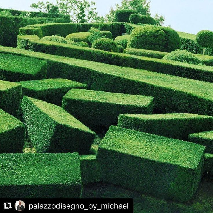 Parterre Design. Garden sculpture can be surreal and is as abstract and any artificial blockset we see today. The beauty of this abstract creation is it's living and growing and forever changing. #palazzodisegno #parterre #gardenn #luxury #livingart #boxhedge #buxus #outdoor #style