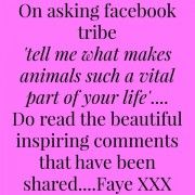 'WHAT MAKES ANIMALS SUCH A VITAL PART OF YOUR LIFE'