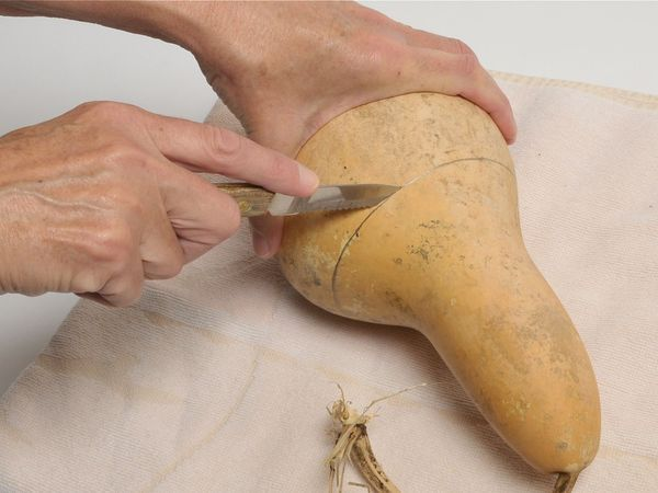 Gourds Crafts   How to Craft with Gourds - CraftStylish