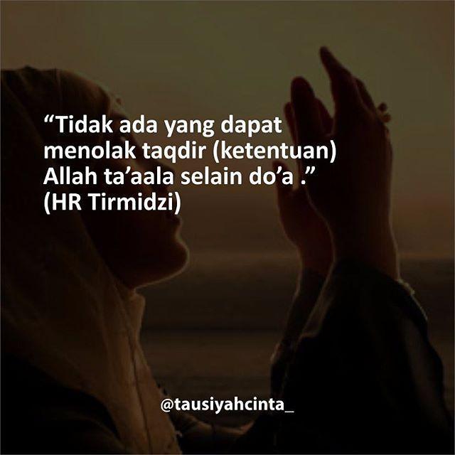 Semoga cita-cita dan harapan kita semua dikabulkan oleh Allah SWT. Follow @hijrahcinta_ http://ift.tt/2f12zSN