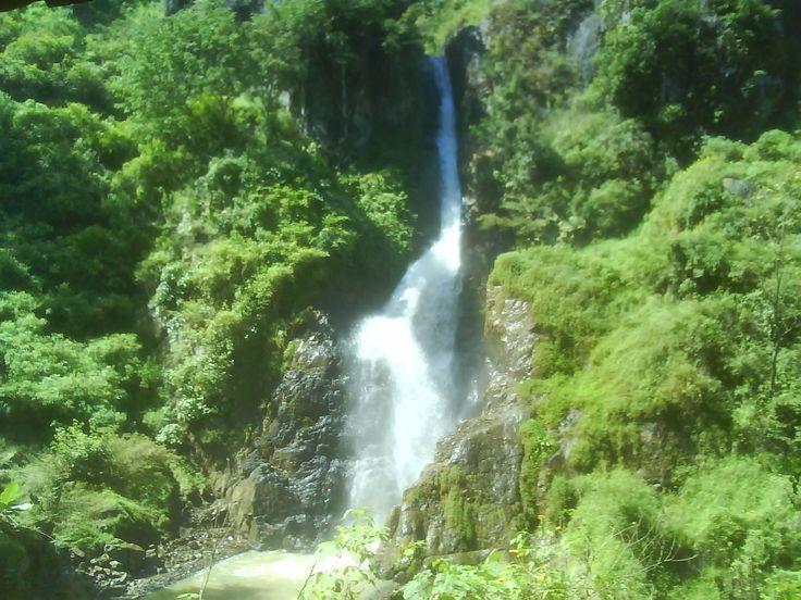 Air Terjun Pletuk Pesona Alam yang Hijau di Jawa Timur - Jawa Timur