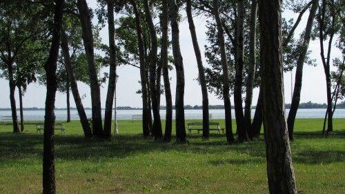 Palicsi tó, Szabadka, Szerbia