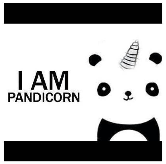 (Te la dedico irisss... ) SIIII! Pandicorn mi nuevo animal favoriito!! :) *-* graaacias!! @Elisa Klabbers