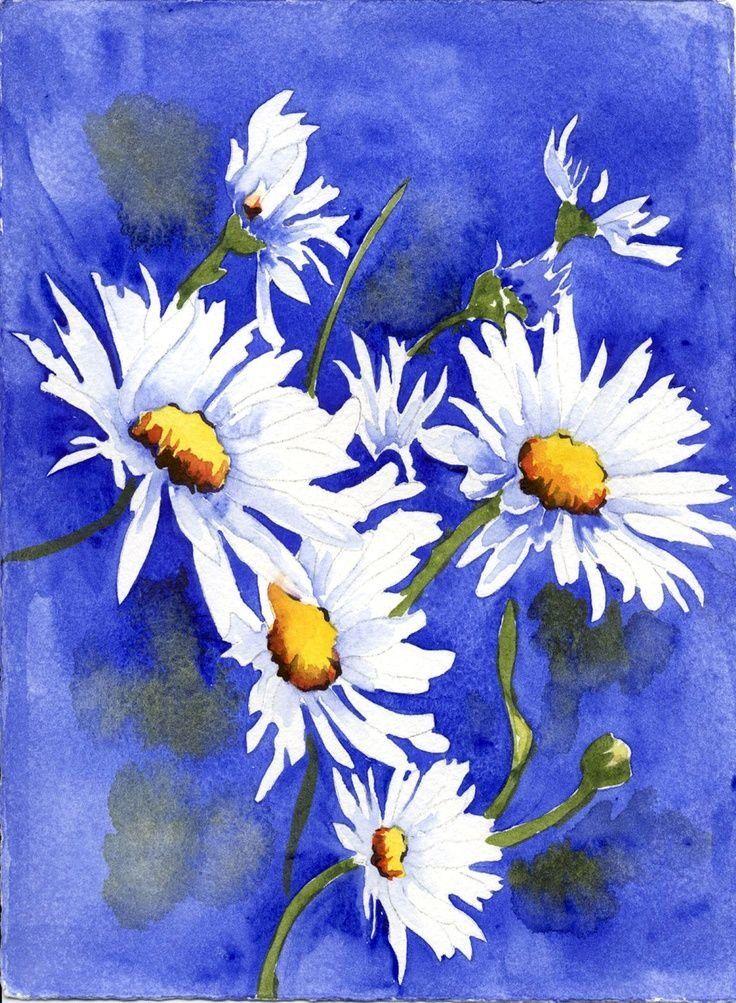 помните, цветы ромашки картинки акварель подтвердить