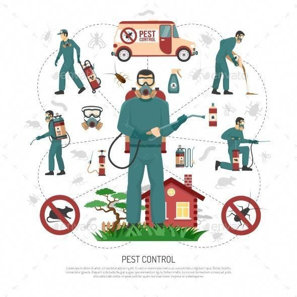 Organic Garden Guide To Controlling Pests For Your Vegetables Pest Control Services Pest Control Termite Control