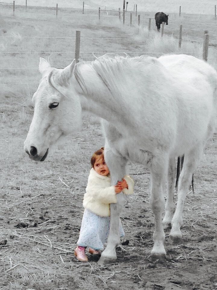I can't get over how sweet this picture is, the love between a girl and a horse.
