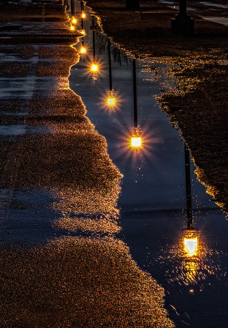 reflection of street lights