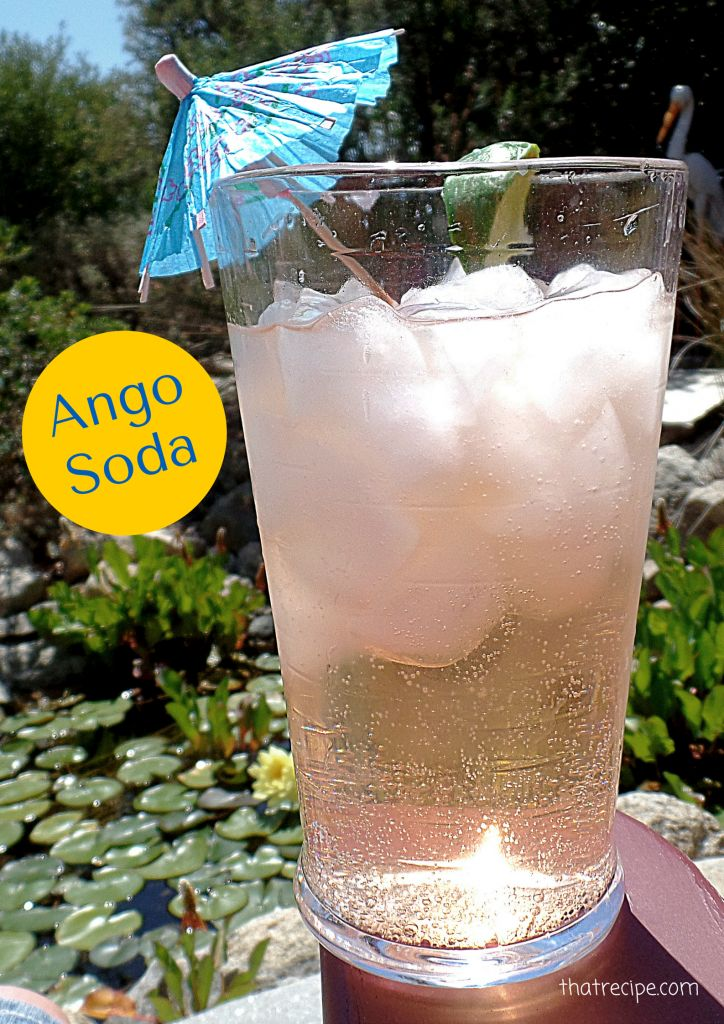 Ango Soda is a non-alcoholic drink made with Angostura Aromatic Bitters and Club Soda.  Add a splash of Maraschino Cherry Syrup for variety. Designated Driver Drink. Mocktail. Southampton.
